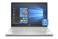 HP Pavilion 14in Silver 8GB Mem 256GB SSD