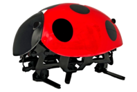 Jittery: Lady Bird - RC Controlled Bug
